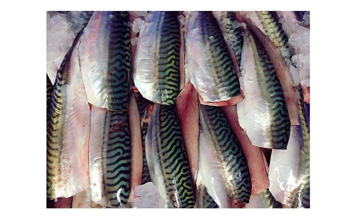 Initiative Armor accompagne Le poisson qui fume maquereau2048x2048